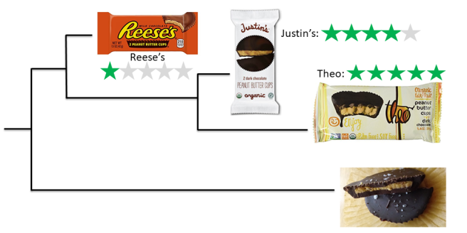 Ethical evaluation of three brands of peanut butter cups: Reese's, Justin's, and Theo.